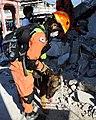 2010년 중앙119구조단 아이티 지진 국제출동100118 세인트제라드 지역 수색활동 (57).jpg