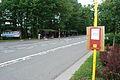 20110623 sarttilman1.jpg