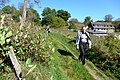 2014-10-04 Wermelskirchen-Altenberg. Reader-06.jpg
