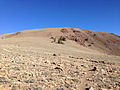 2014-10-19 09 30 19 View north towards the south summit of Mount Jefferson, Nevada from about 9960 feet on the trail from Jefferson Summit.JPG