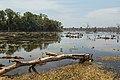 2016 Angkor, Jayatataka Baray (13).jpg