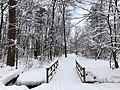 2019-01-14 09 00 33 View along a walking path and footbridge after a heavy snowfall in the Franklin Farm section of Oak Hill, Fairfax County, Virginia.jpg