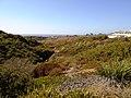 2019 View west from Salk Institute.jpg