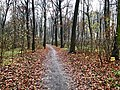 2020-12-12-Hike-to-Rheydt-Palace-and-its-surroundings.-Foto-38.jpg