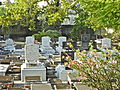 31 Dec 2011 - Bridgetown Synagogue Cemetery.JPG