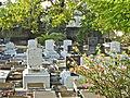 31 Dec 2011 - Bridgetown Synagogue Cemetery.JPG