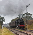 78019 leaving Quorn & Woodhouse (1).jpg