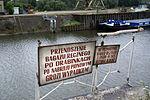 9707 (2)viki Port Miejski. Foto Barbara Maliszewska.jpg