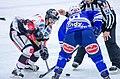 AUT, EBEL,EC VSV vs. HC TWK Innsbruck (11000599444).jpg