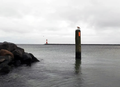 A Bird and His Sea in Rostock.png