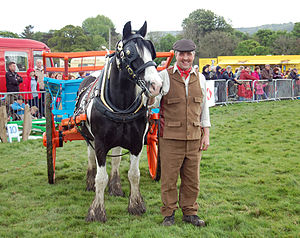 Culture of Yorkshire - Local resident Kevin Pack, dressed in vintage Yorkshire attire, takes his horse for a turn of the field in front of the crowd at Otley Show.