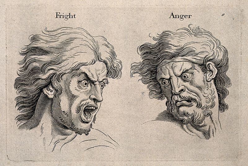 File:A frightened and an angry face, left and right respectively. Wellcome V0009326.jpg
