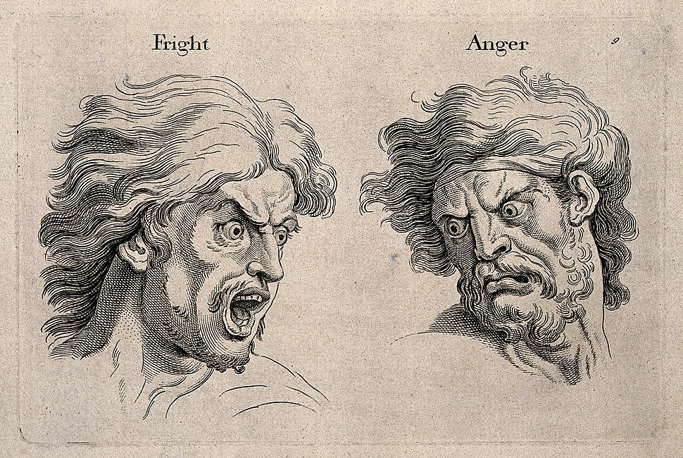 A frightened and an angry face, left and right respectively. Wellcome V0009326