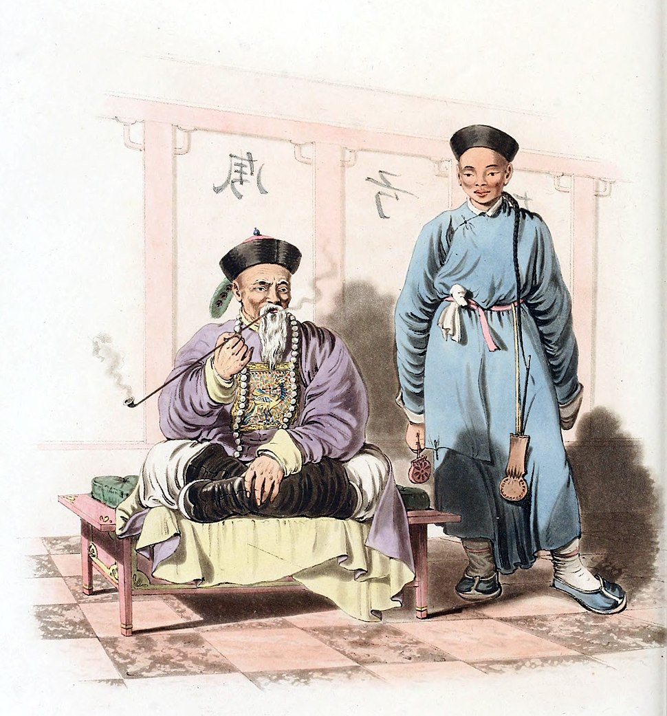 A mandarin attended by a domestic