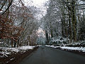 A road between Belvoir and Knipton, Leicestershire - Dec 2005 (1).JPG