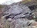 A slab at Whallowbarrow Crag - geograph.org.uk - 225667.jpg