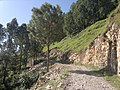 Abbottabad District, Pakistan - panoramio (6).jpg