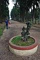 Acharya Jagadish Chandra Bose Indian Botanic Garden - Howrah 2011-02-20 1591.JPG