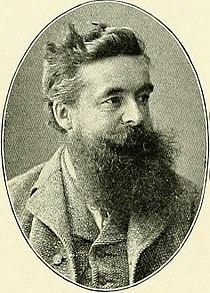Acta Horti berg. - 1905 - tafl. 133 - Hans Schinz.jpg