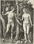 Adam Eva, Durer, 1504.jpg