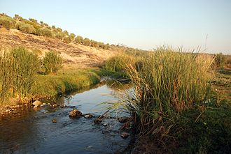 Afrin River - Afrin river south of Afrin, Syria