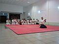 Aikido ajctes 2014.jpg