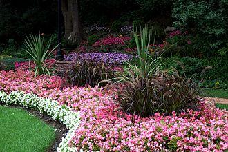 Alexander Muir - Flowerbeds in bloom in the Alexander Muir Memorial Gardens