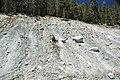 Alpine glacial till (Pleistocene; near Dana Fork, Yosemite National Park, California, USA) 2.jpg