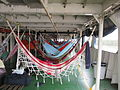 Amazon-hammocks.JPG