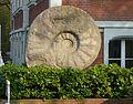 Ammonit-Nachbildung Münster Himmelreichallee.jpg