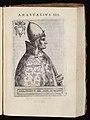 Anastasius IV. Anastasio IV.jpg