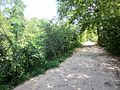 Ancien Canal du Rhône au Rhin near Fesssenheim, Alsace, France - panoramio.jpg
