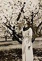 Anna Pabst 1896-1935 (30794405487).jpg