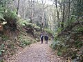 Another Sunday afternoon walk - geograph.org.uk - 1583173.jpg