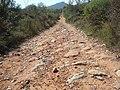 Antiguo camino romano de la vía Augusta (La Puebla Tornesa).jpg