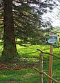 Arboretum de Hoste-Bas.jpg