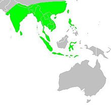 Map showing the breeding areas in Asia and Oceania
