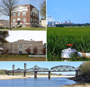 Clockwise from top: a rice field on the Grand Prairie, the Yancopin Bridge over the Arkansas River, the Southern District Courthouse in DeWitt, the Northern District Courthouse in Stuttgart, Arkansas