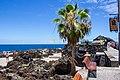 At Garachico, Tenerife 2019 006.jpg