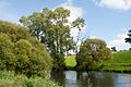 Athassel Priory St. Edmund River Suir II 2012 09 05.jpg