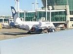 Aurora airlines.jpg