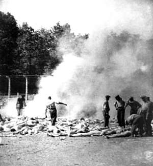 Sonderaktion 1005 - Burning of bodies at Auschwitz-Birkenau by Sonderkommando prisoners in 1944 (secret photo by prisoner Alberto Errera)