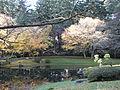 Autumn 7.jpg