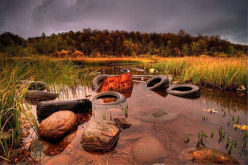 Autumn Tyres