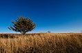 Autumn at Frontenac State Park, Minnesota (24011629357).jpg