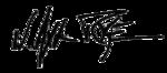 Axl Rose signature trans.png