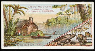 James Cook Ayer - Advert for Ayers Ague Cure