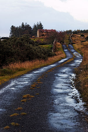 Back Road In Ireland.jpg