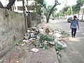 Bad smell dustbin on road of dhaka.jpg
