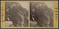 Basaltic Cliffs, Palisades, looking north, by Chase, W. M. (William M.), 1818 - 9-1905.png